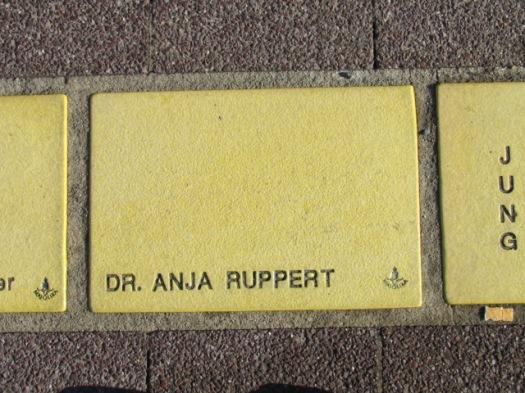 Fliese 12 - Karlsruher Sonnenfächer - Dr. Anja Ruppert