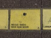 Sonnenfächer Karlsruhe - Nicole - Guido - Maxi - Susi - Mohr
